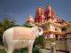 Лакшми-Нараян: храм счастья и изобилия в Дели