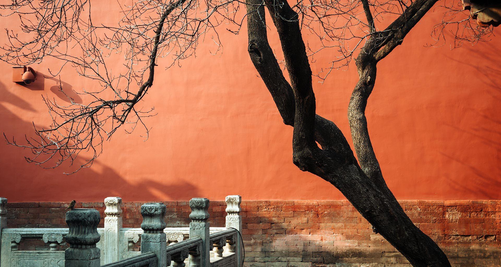 Город запретный, город открытый. Прогулка по Пекину